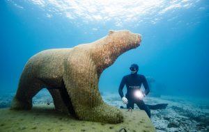 Covid : plongez et visitez le musée subaquatique de Marseille