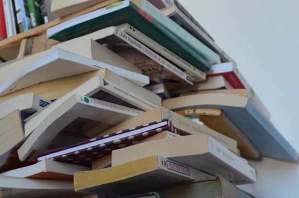 Échanges, dons, décorations… Que faire des livres que vous n'utilisez plus ?