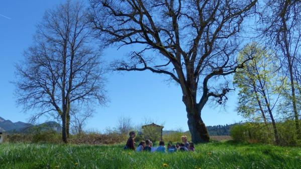 Dans la Drôme, cette école participative forme les jeunes générations à l'écologie