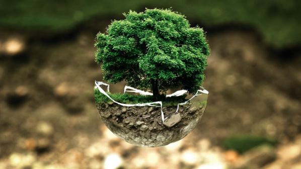 Sur 570 minutes de débat à la primaire de droite, 7 ont été consacrées à l'écologie !