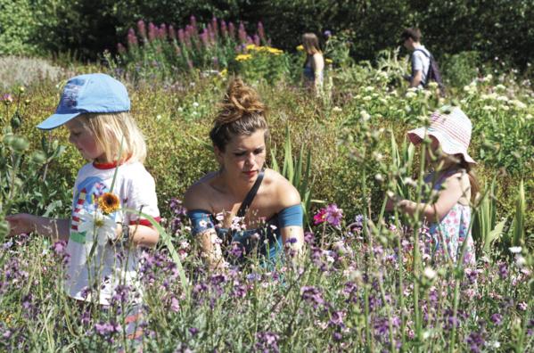 Slow Flowers : Les fleurs du jardin prennent leur revanche en Angleterre