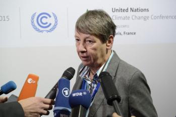 En Allemagne, la politique anti-viande de la ministre de l'Environnement divise