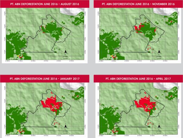 McDonald's, Nestlé ou encore Unilever sont accusés de déforestation illégale en Indonésie