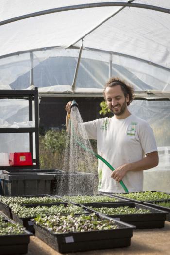 Locale, bio et solidaire : bientôt une ferme urbaine de 6 000 m2 en plein Paris