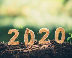 10 bonnes nouvelles de 2020