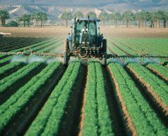Pour survivre, les agriculteurs vont devoir se transformer en startupeurs
