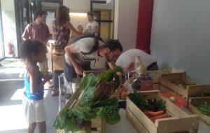 Circuits courts : une diversité de modèles au service de la résilience alimentaire
