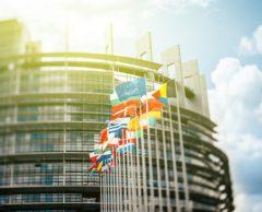 Élections européennes : Espoirs verts