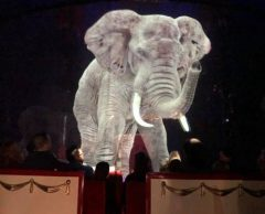 Au cirque Roncalli, des animaux sauvages… en hologramme