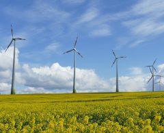 Vrai-faux : 10 questions qui fâchent sur les éoliennes