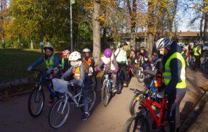 Ce matin, j'ai cours de vélo à l'école !