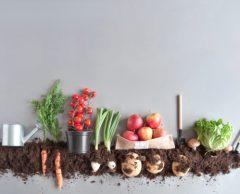 66 % des Français doutent de la fiabilité des produits bio