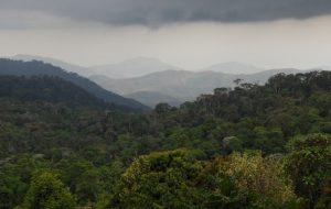 [diaporama] Ces espaces naturels vitaux pour la biodiversité