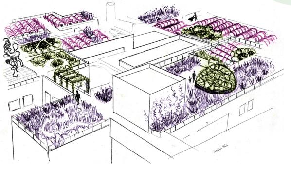 Bientôt, une ferme florale va éclore sur les toits de Paris