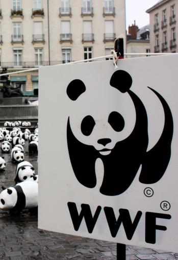 Le WWF lance une appli pour consommer plus responsable