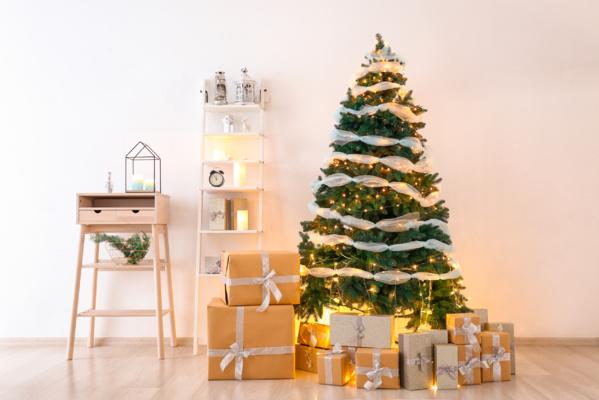 Comment bien choisir son sapin naturel pour Noël