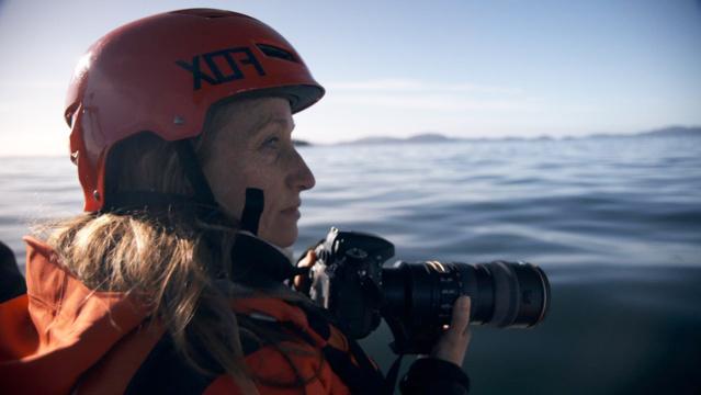 Céline Cousteau sur les traces de son grand-père