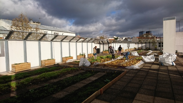À Paris, ces collégiens financent leur ferme urbaine