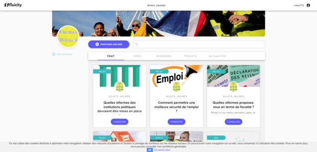 À la Réunion, les Gilets jaunes abandonnent Facebook pour les civic tech