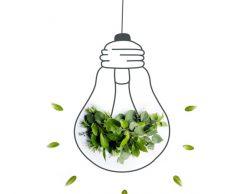 Offres d'électricité verte, comment démêler le vrai du faux