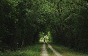 Un été local, éthique, écolo : 10 bons plans pour des micro-aventures en France