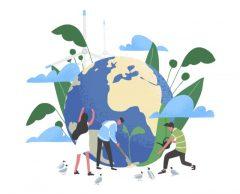 Marseille, Lyon, Bordeaux… Butin record et position de force pour les écologistes