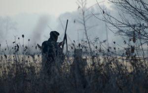 La chasse a-t-elle vraiment un intérêt écologique ?