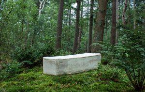 Les cercueils en carton ou champignons, écolos jusqu'à la mort