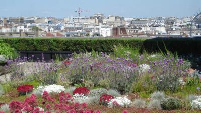 En France, les toits des zones commerciales seront verts ou ne seront pas