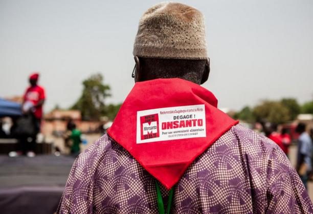 De Paris à Ouagadougou et Rio, la mobilisation de milliers de manifestants contre Monsanto