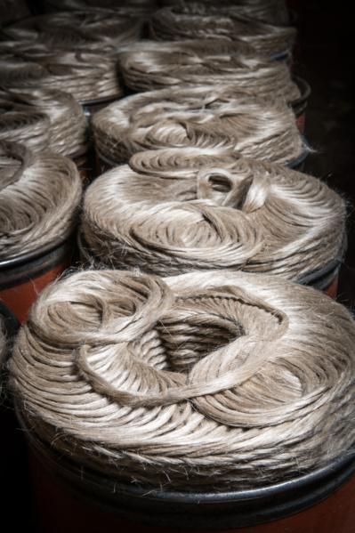 Le lin, ce textile français que le monde envie