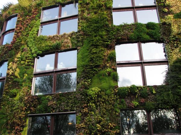Pour lutter contre la pollution et le réchauffement, 4 projets de revégétalisation des villes