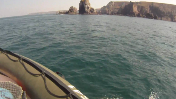 Le chalutage profond interdit dans les eaux européennes au-delà de 800 mètres