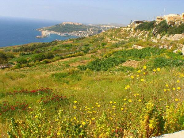 Malte est le premier pays de l'Union européenne à interdire le glyphosate