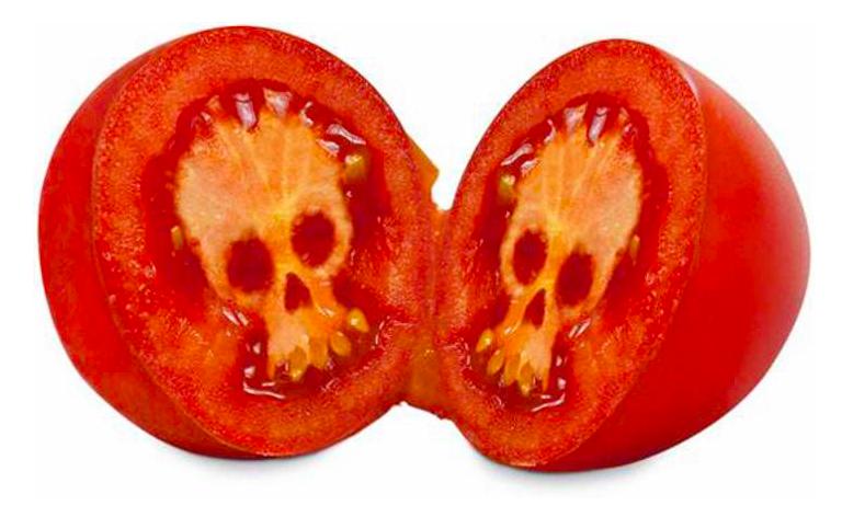 tomates en hiver