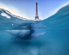 Canicules : 4 solutions pour rafraîchir Paris