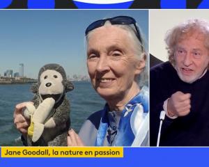 """Pour Jane Goodall, l'humain """"se sauvera en recréant du lien avec la nature"""""""