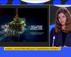 """L'exploitation minière des fonds marins, """"un enjeu stratégique pour la France"""""""