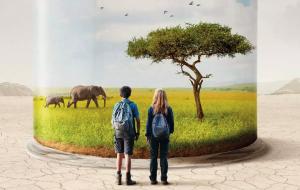 """Cinéma et climat : """"Le 7e art peut influencer l'Histoire"""""""