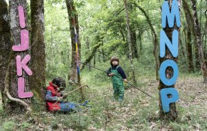 École en forêt : de quel bois je m'éduque