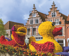 Trois inventions nées aux Pays-Bas qui ont conquis le monde