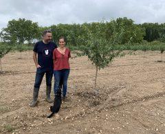 En Provence, ils relancent la culture bio de l'amande