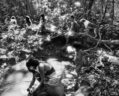 EXPO – L'Amazonie puissante et fragile de Sebastião Salgado