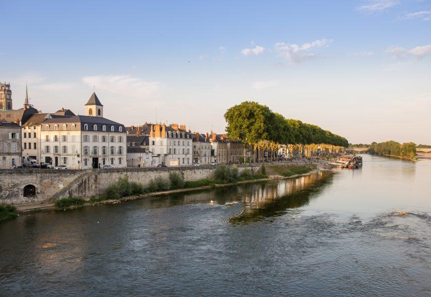 Arbres Orléans