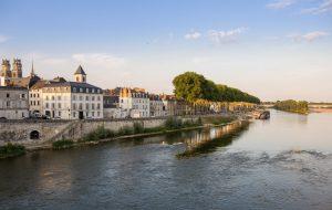 Orléans donne un prix aux arbres pour les protéger