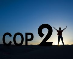 Accord de Paris : quel bilan cinq ans après pour la COP21 ?