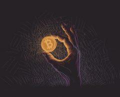 Rencontre avec sept figures de la french bitcoin connection