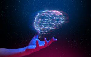 Ils veulent connecter le cerveau humain