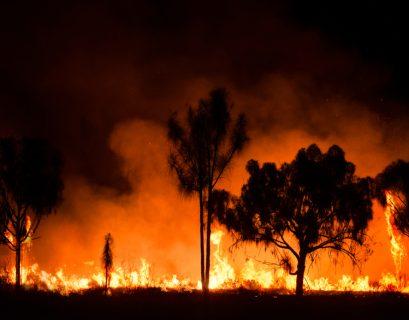 Incendies en Australie.