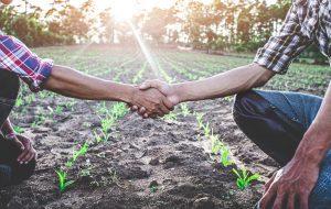 Transition écologique, un million d'emplois à la clé